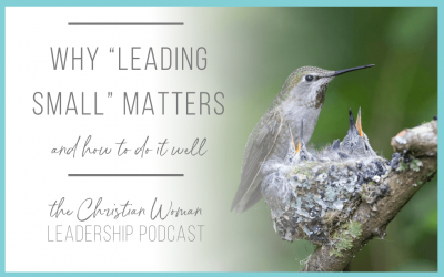 "Why ""Leading Small"" Matters & How to Do it Well [113]"