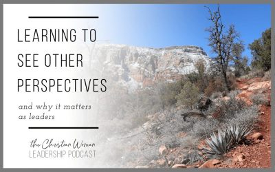 Learning to See Other Perspectives & Why It Matters as Leaders [145]